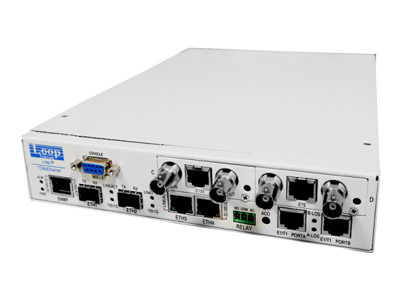 Multiservice Access TDMoE - IP6704A